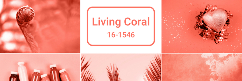 Capa do artigo Living Coral: cor Pantone de 2019!